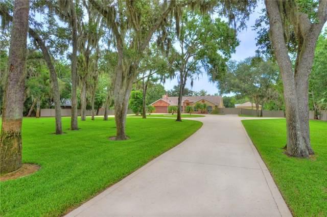 5923 Trailwood Drive, Port Orange, FL 32127 (MLS #O5800801) :: Team Bohannon Keller Williams, Tampa Properties
