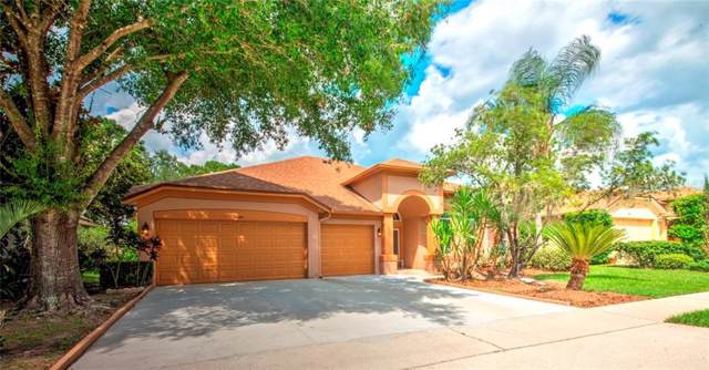 2666 University Acres Drive, Orlando, FL 32817 (MLS #O5801051) :: Griffin Group
