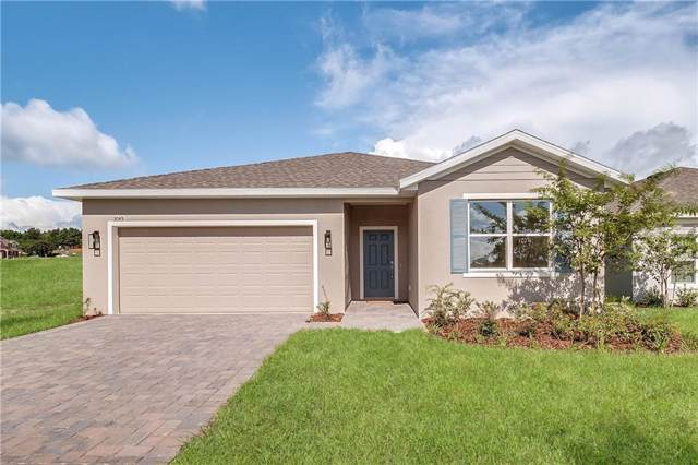 3045 Sunscape Terrace, Groveland, FL 34736 (MLS #O5801287) :: Griffin Group