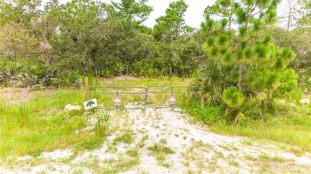 2521 Mills Creek Road, Chuluota, FL 32766 (MLS #O5801314) :: GO Realty