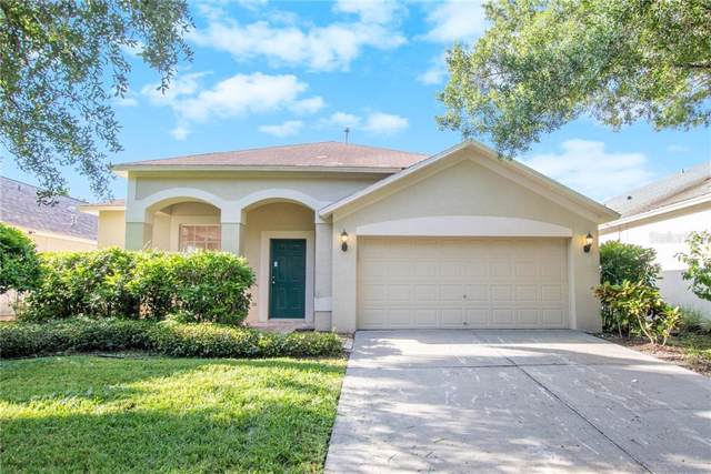 11825 Easthampton Drive, Tampa, FL 33626 (MLS #O5801787) :: The Duncan Duo Team