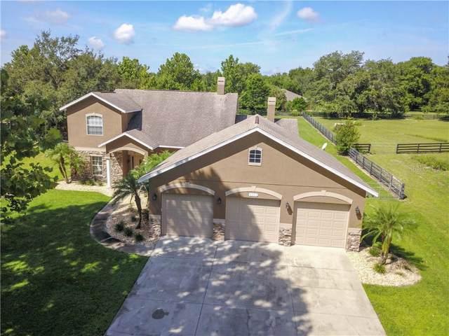 4307 Britt Road, Mount Dora, FL 32757 (MLS #O5802748) :: Dalton Wade Real Estate Group