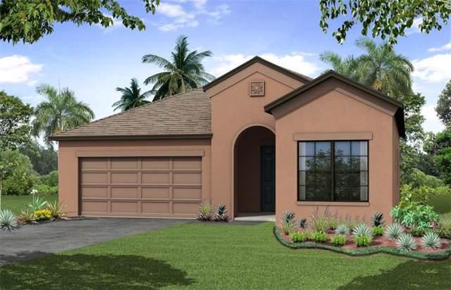 2974 Scarlett Drive, Saint Cloud, FL 34772 (MLS #O5803823) :: Cartwright Realty