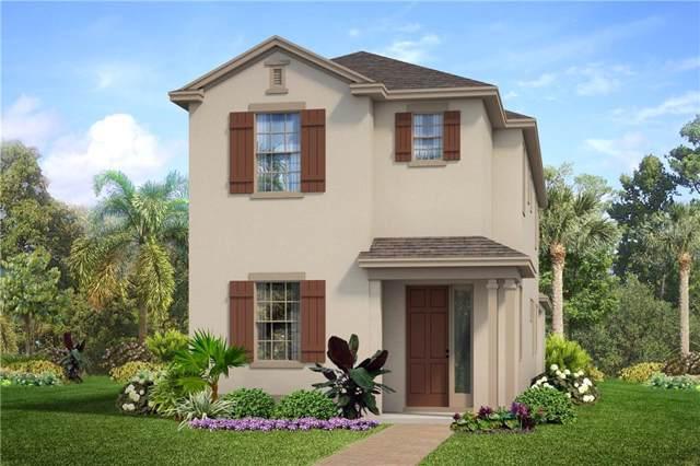3219 Blazing Star Lane, Harmony, FL 34773 (MLS #O5803840) :: Homepride Realty Services