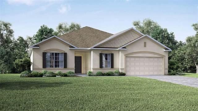 1681 Marsh Pointe Drive, Groveland, FL 34736 (MLS #O5803993) :: 54 Realty
