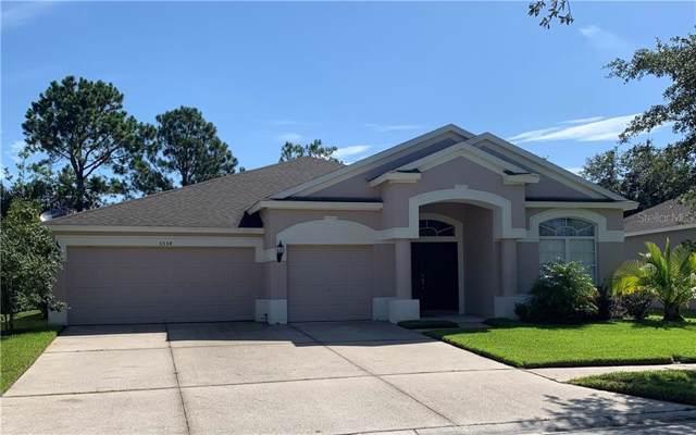 5554 Riva Ridge Drive, Wesley Chapel, FL 33544 (MLS #O5804020) :: Team Pepka