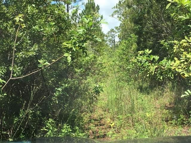 4260 Lake Gentry Road, Saint Cloud, FL 34772 (MLS #O5804252) :: The Duncan Duo Team