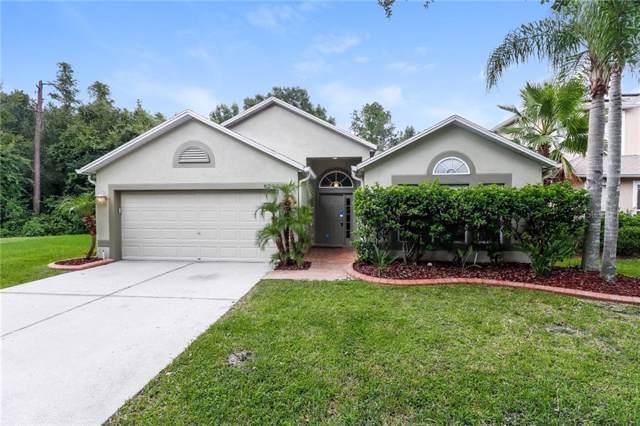 8202 Stockton Way, Tampa, FL 33647 (MLS #O5804436) :: Andrew Cherry & Company