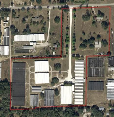 2584 W Kelly Park Road, Apopka, FL 32712 (MLS #O5804440) :: Burwell Real Estate