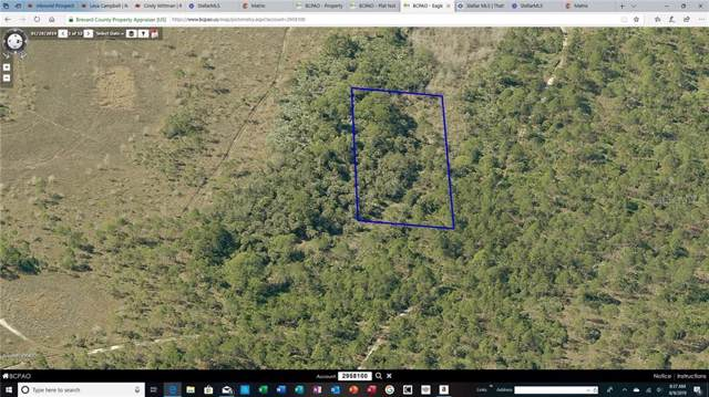00 (UNESTABLISHED ADDRESS), Grant, FL 32949 (MLS #O5804524) :: Florida Real Estate Sellers at Keller Williams Realty