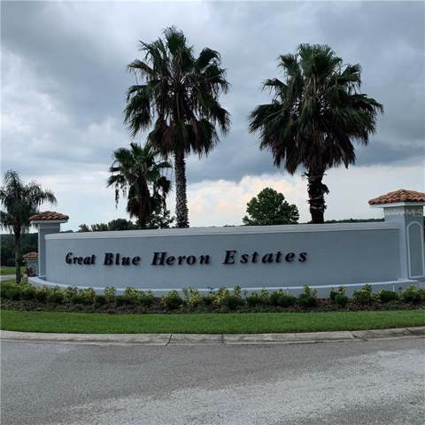 18307 Great Blue Heron Drive, Groveland, FL 34736 (MLS #O5805087) :: EXIT King Realty