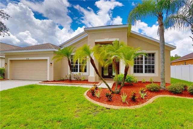 8118 Brinegar Circle, Tampa, FL 33647 (MLS #O5805293) :: Andrew Cherry & Company