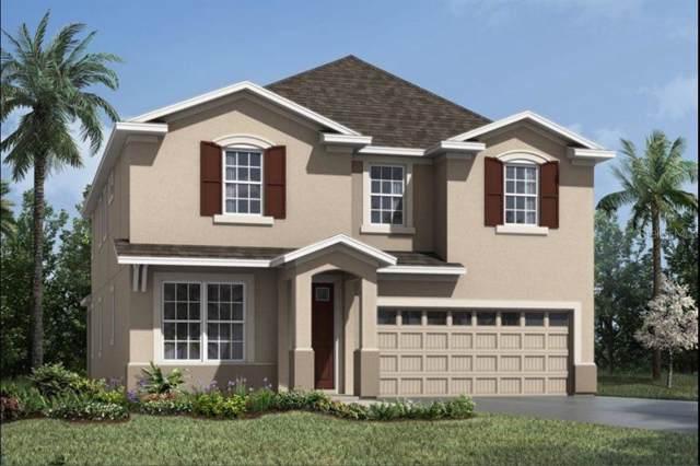 1714 Blissful Drive, Kissimmee, FL 34744 (MLS #O5805320) :: Zarghami Group