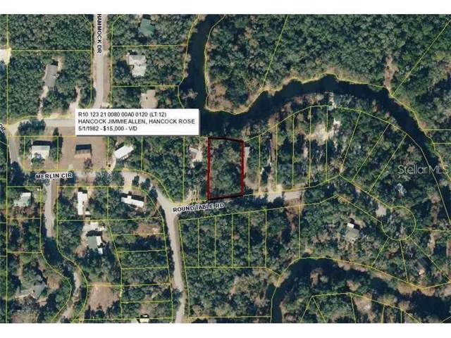 33009 Round Table Road, Dade City, FL 33523 (MLS #O5805627) :: Team 54