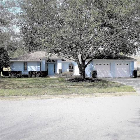 405 Juniper Way, Tavares, FL 32778 (MLS #O5805861) :: Griffin Group