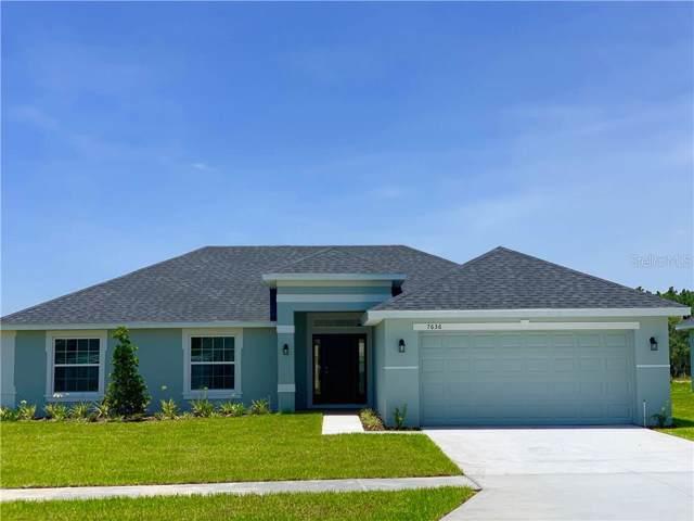 31521 Broadwater Avenue, Leesburg, FL 34748 (MLS #O5805951) :: Team Bohannon Keller Williams, Tampa Properties