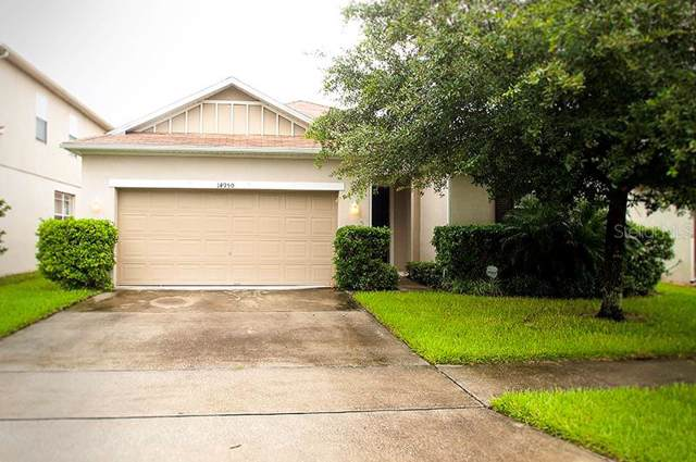 14950 Perdido Drive, Orlando, FL 32828 (MLS #O5805969) :: Team Bohannon Keller Williams, Tampa Properties