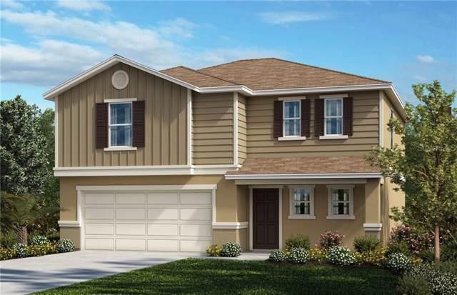6429 Domenico Court, Groveland, FL 34736 (MLS #O5806171) :: Griffin Group