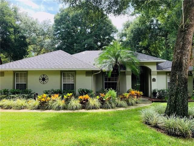 25950 Sackamaxon Drive, Sorrento, FL 32776 (MLS #O5806247) :: Lock & Key Realty