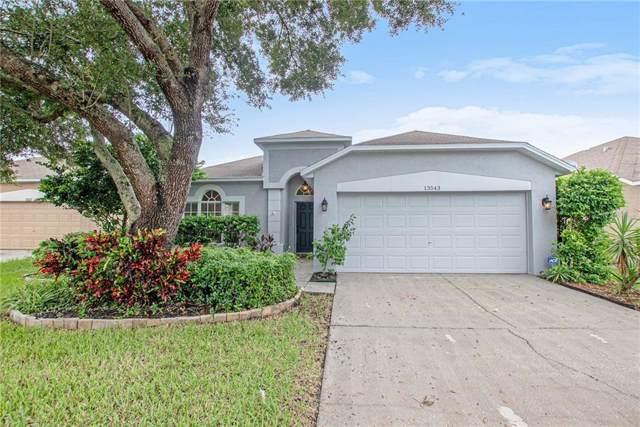 13543 Mere View Drive, Odessa, FL 33556 (MLS #O5806249) :: Team Bohannon Keller Williams, Tampa Properties