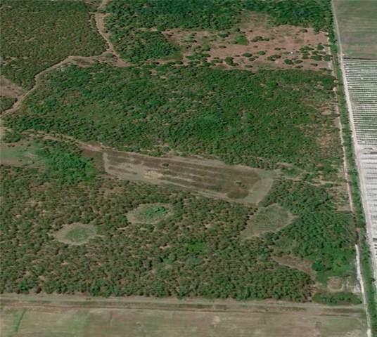 202 K W Farms Road, Lake Placid, FL 33852 (MLS #O5806323) :: Cartwright Realty
