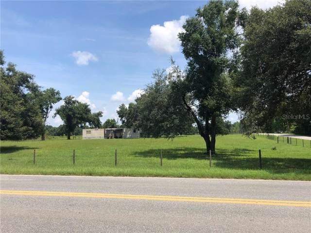 3405 W Ponkan Road, Apopka, FL 32712 (MLS #O5806349) :: Burwell Real Estate