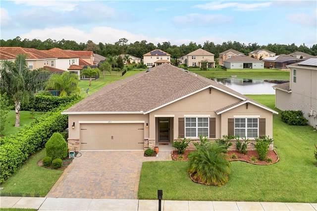 293 Drayton Avenue, Davenport, FL 33837 (MLS #O5806491) :: Cartwright Realty