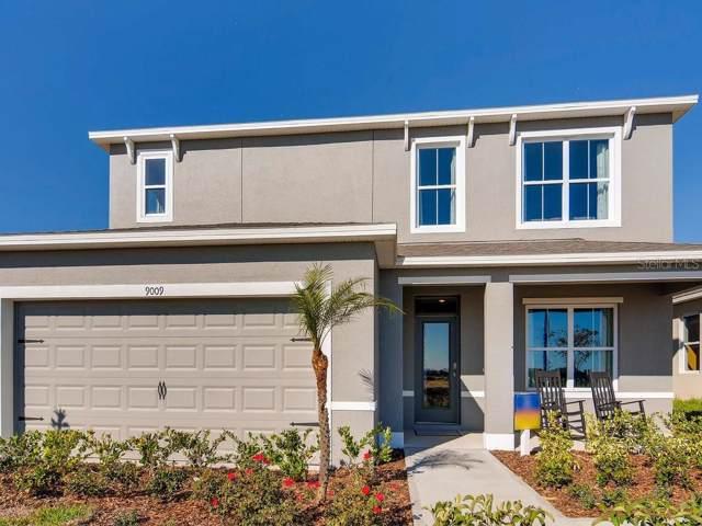 2392 White Poppy Drive, Kissimmee, FL 34747 (MLS #O5806546) :: Zarghami Group