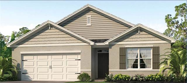 2393 White Poppy Drive, Kissimmee, FL 34747 (MLS #O5806618) :: Zarghami Group