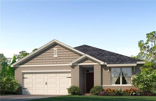 2397 White Poppy Drive, Kissimmee, FL 34747 (MLS #O5806636) :: Zarghami Group