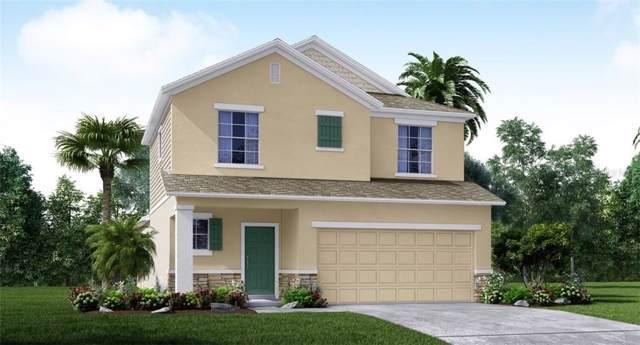 4301 Desert Rose Avenue, Kissimmee, FL 34746 (MLS #O5806758) :: The Light Team