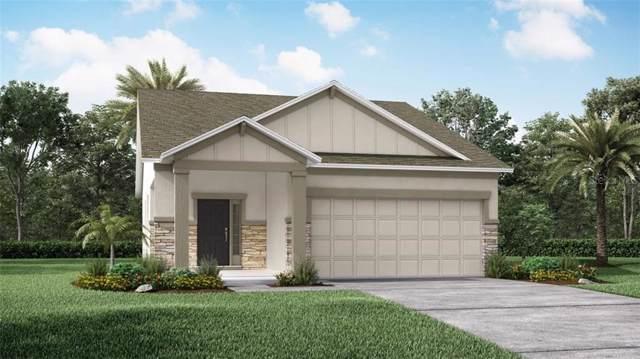 4285 Desert Rose Avenue, Kissimmee, FL 34746 (MLS #O5806770) :: The Light Team