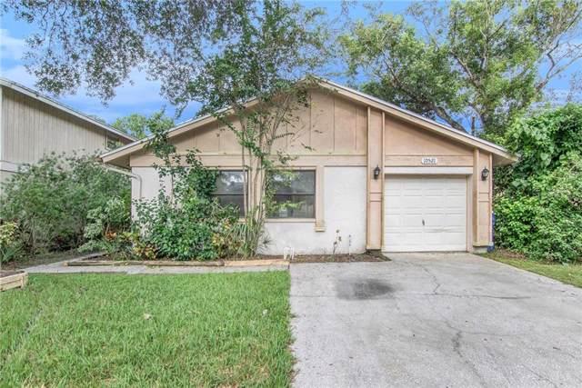 10521 Chadbourne Drive, Tampa, FL 33624 (MLS #O5806968) :: Zarghami Group