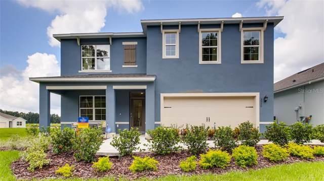 3731 Holly Grove Lane, Mount Dora, FL 32757 (MLS #O5807048) :: Your Florida House Team