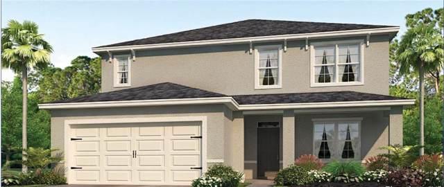 3707 Holly Grove Lane, Mount Dora, FL 32757 (MLS #O5807059) :: Your Florida House Team