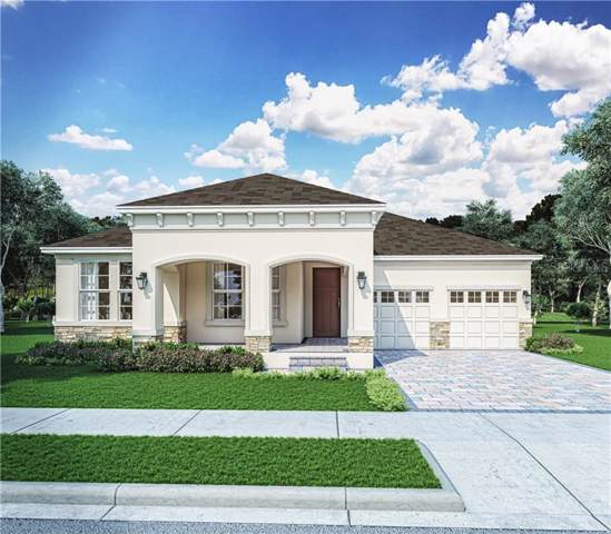 10234 Merrymeeting  Bay Drive, Winter Garden, FL 34787 (MLS #O5807169) :: Griffin Group
