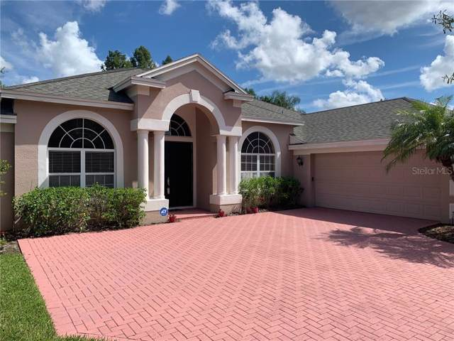 13851 Glynshel Drive, Winter Garden, FL 34787 (MLS #O5807402) :: Team 54