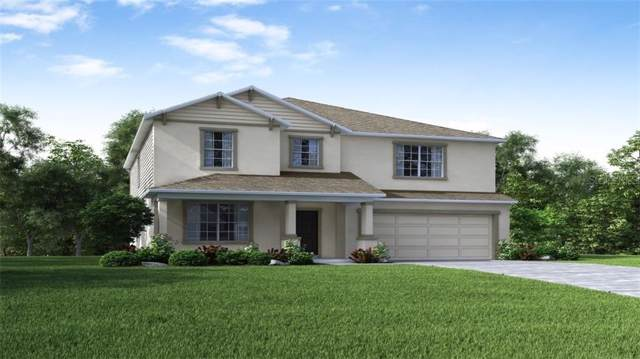 11344 June Briar Loop, San Antonio, FL 33576 (MLS #O5807837) :: Bustamante Real Estate