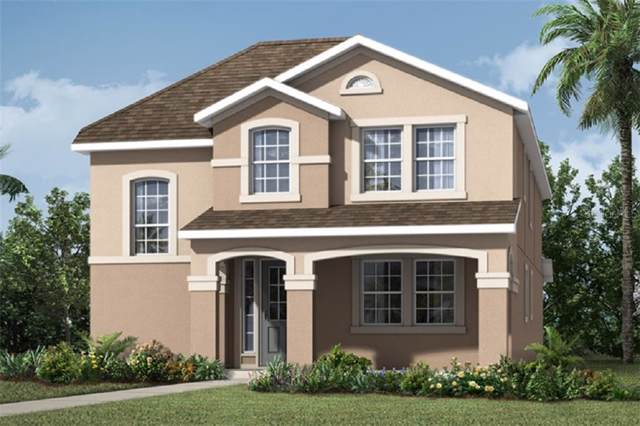 1724 Felicity Lane, Kissimmee, FL 34744 (MLS #O5808136) :: Premium Properties Real Estate Services