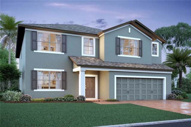 13320 Magnolia Valley Drive, Clermont, FL 34711 (MLS #O5808369) :: The Duncan Duo Team