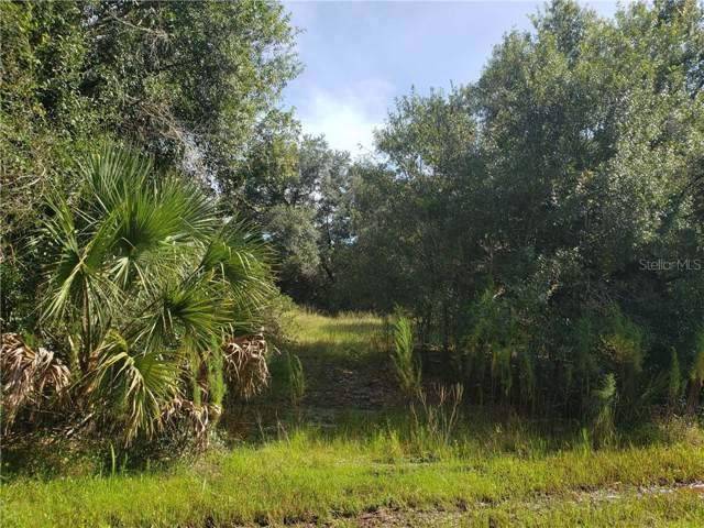 Jeming Road, North Port, FL 34286 (MLS #O5808977) :: Ideal Florida Real Estate