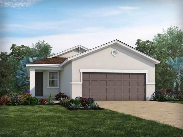 7412 Ashcroft Drive, Wesley Chapel, FL 33545 (MLS #O5809099) :: Team Bohannon Keller Williams, Tampa Properties