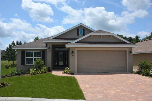 805 Chestnut Drive, Fruitland Park, FL 34731 (MLS #O5809292) :: Premium Properties Real Estate Services