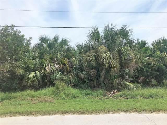 4603 Van Kleeck Drive, New Smyrna Beach, FL 32169 (MLS #O5809808) :: Florida Life Real Estate Group