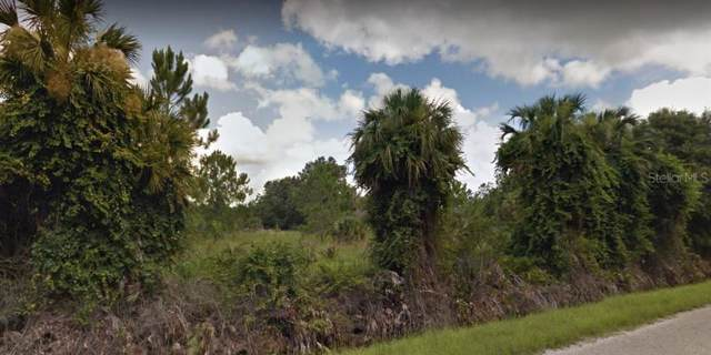 1290 Pell Road, Osteen, FL 32764 (MLS #O5809923) :: Cartwright Realty
