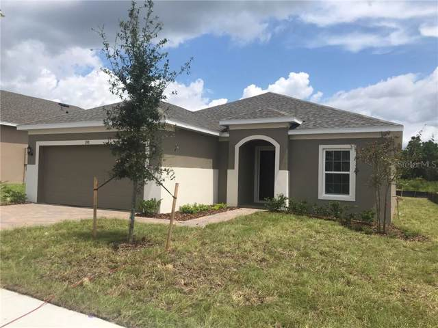 198 Hydra Way, Groveland, FL 34736 (MLS #O5810956) :: Griffin Group
