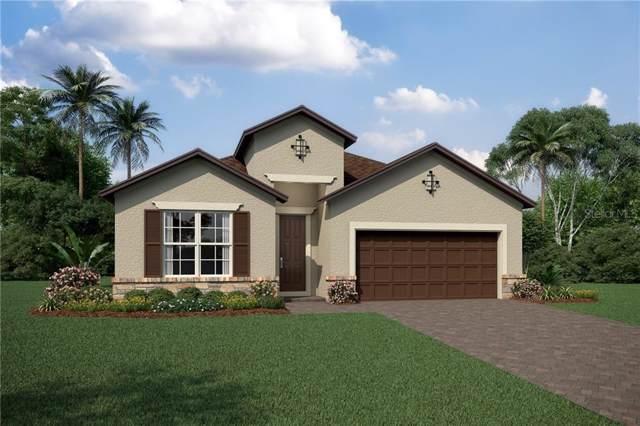 4008 Green Sable Drive, Orlando, FL 32824 (MLS #O5811248) :: The Duncan Duo Team