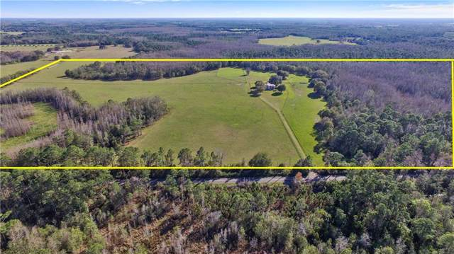 6700 Lake Erie Road, Groveland, FL 34736 (MLS #O5811723) :: Baird Realty Group