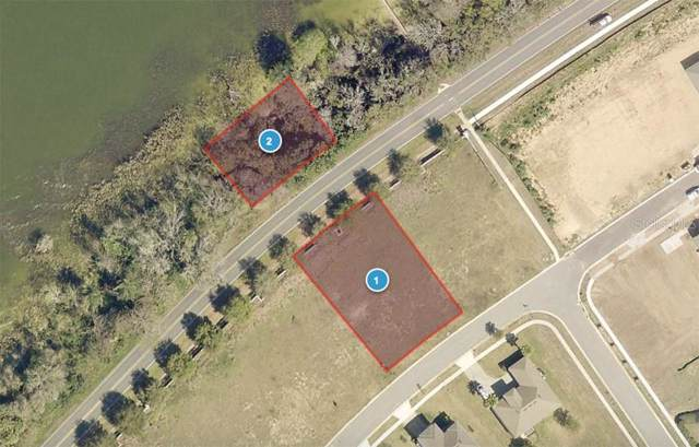 3255 Landing View, Tavares, FL 32778 (MLS #O5811849) :: Cartwright Realty