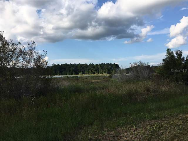 000 SE 158TH Place, Umatilla, FL 32784 (MLS #O5812044) :: Armel Real Estate